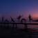 2015 gulf shores best beach photographer
